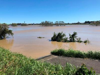 水害2019-2